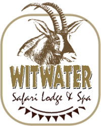 Witwater Logo