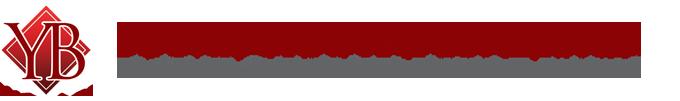 Younis Bhatti Logo